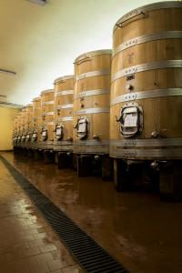 tini fermentazione e affinameto