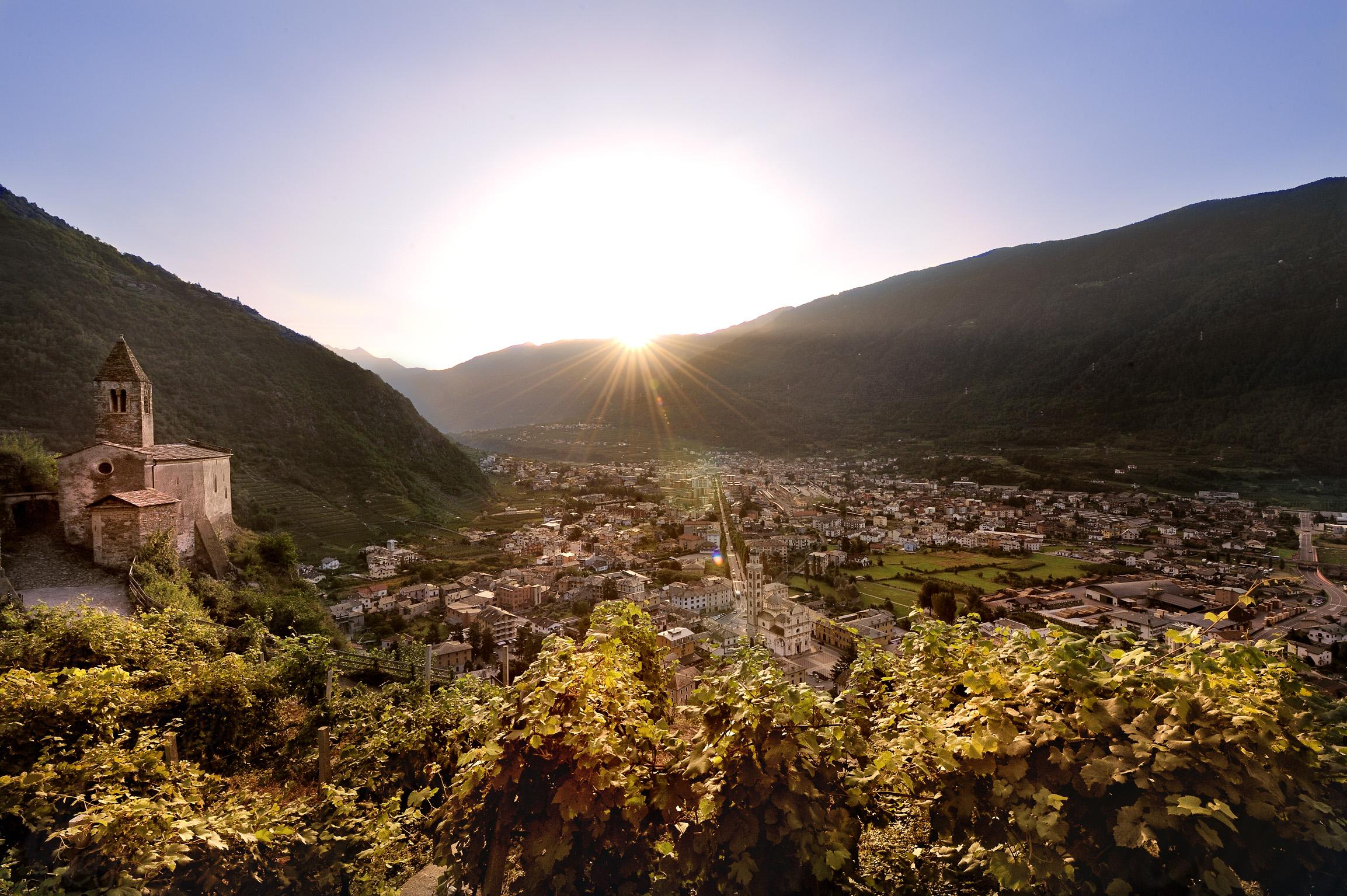 "La viticoltura ""eroica"" Valtellinese"