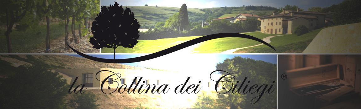 La Collina dei Ciliegi – Dal Veneto a casa tua in 30 minuti
