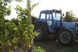 montenato-griffini-trattore