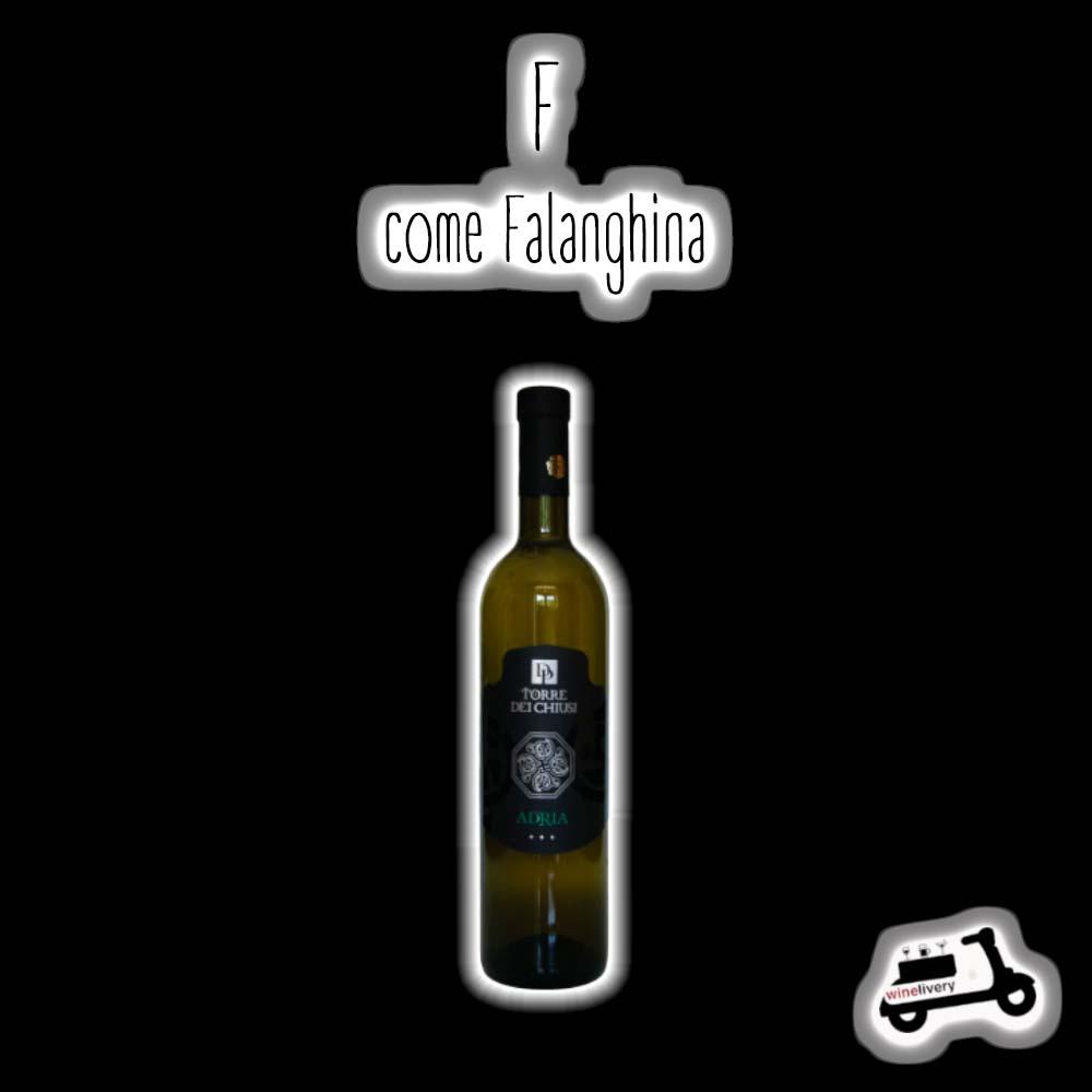 L'alfabeto del vino – F… come Falanghina!