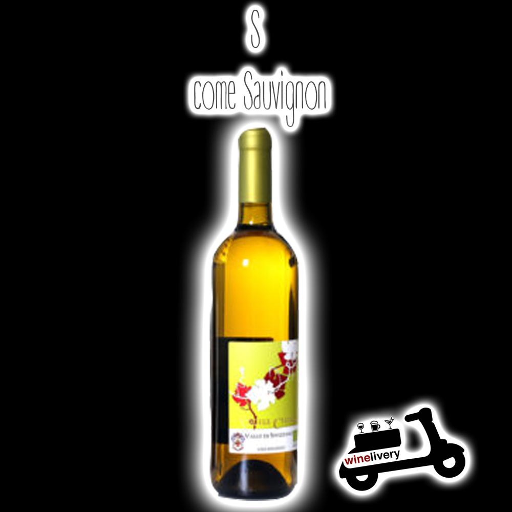 L'alfabeto del vino – S come Sauvignon Blanc