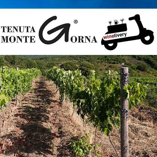 Dalle terre vulcaniche, i vini intensi di Monte Gorna