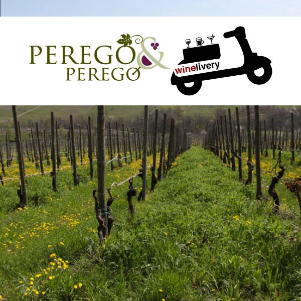 Perego & Perego, il vino biologico nel cuore dell'Oltrepo'