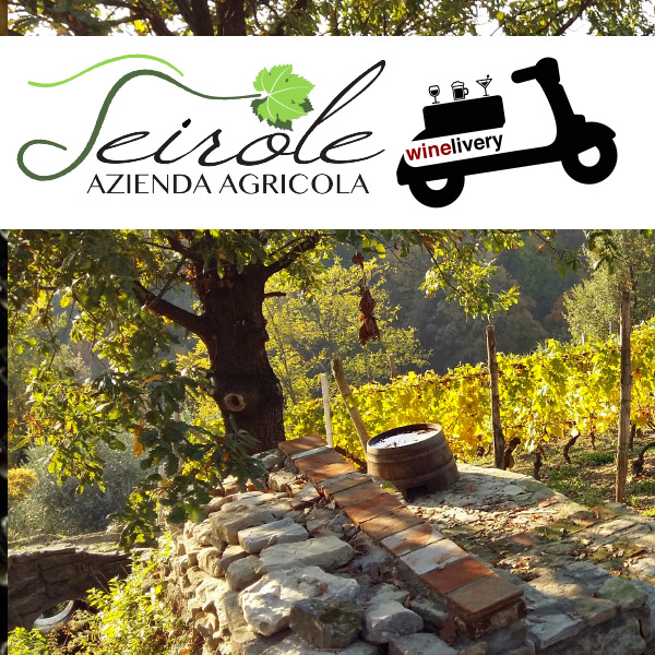 Vini Seirole, le vigne delle Langhe