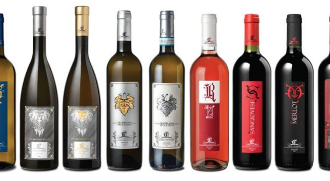Una nuova cantina umbra per Winelivery – Colle Unciniano
