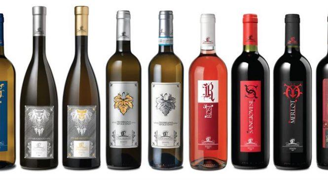 Una nuova cantina umbra per Winelivery – Colle Unciniano