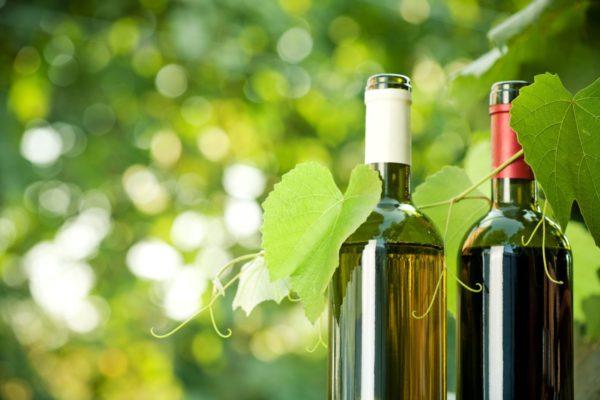 GO VEGAN! Anche il vino può essere vegano…