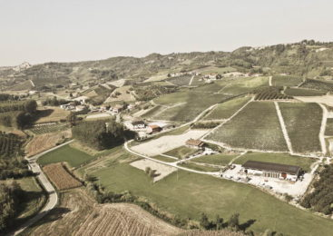 "Carlin De Paolo: i vini Piemontesi ""Come una volta"""