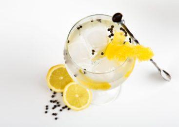 """Gin e Acqua Tonica: da medicina per la malaria a famoso cocktail, il """"Gin Tonic"""""""